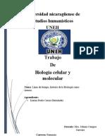 Biología molecular linea de tiempo