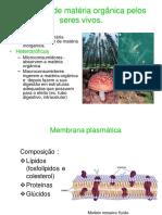 10-Obtenção matéria1.pdf