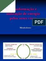 14 -Transformação e utilização de energia.pdf