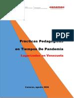EXPERIENCIAS PEDAGOGICAS LUGARIZADAS FICHAS - .pdf