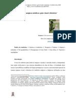 Simbolos_magicos_nordicos_guia_visual_e.pdf