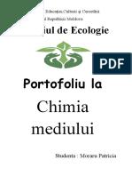 Portofoliu la chimia mediului.docx