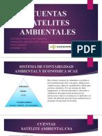 TALLER CUENTAS SATELITES  AMBIENTALES