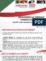 NUEVO_PDF-DIPOSITIVAS_CAMBIO_ESTRUCTURAL-2020-PROFE_ROSSI_GUERRERO.pdf