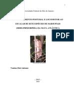 Dissertação 2003 - Comportamento postural e locomotor ao escalar de sete espécies de marsupiais da Mata Atlântica- Vanina Antunes.pdf