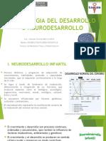 NEUROLOGIA DEL DESARROLLO O NEURODESARROLLO - clase teorica USJB.pptx