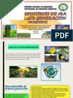 Biocombustibles de Primera Hasta Cuarta Generacion.