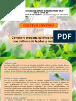 Sesión 6. Sistemas de propagación de plantas