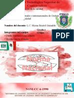 Norma ISO 2.1.6.-OTROS [Autoguardado]
