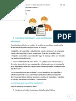 20 10 16 Politica SYSO pract. prof II (1)