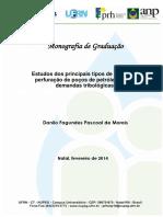 danilofagundesmono.pdf