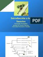 5 Hexápodos Polineoptera 2018