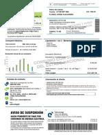 Factura_2020-03-04 (1).pdf
