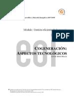 COGENERACIÓN-Aspectos Tecnológicos-(Diego Fraile)
