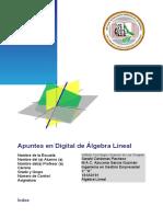 Apuntes en Digital.docx