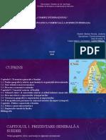 Presentation1 CI.pptx