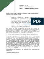 Apelacion de Mandato de Detencion Preventiva