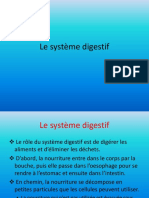 Le-systeme-digestif