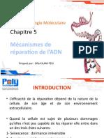 Chapitre 5_ Biologie Mol
