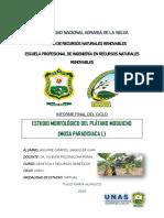 Informe Final -(Genetica)