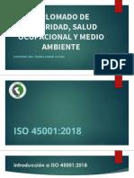 434225131-CLASE-1-Diplomado-de-SSOMA-Peru.pdf