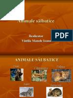 Animale salbatice- prezentare