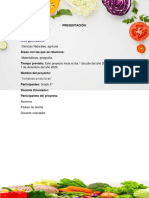Formulación Problema o Pregunta de Formulación Proyecto Hortalizas Productivas