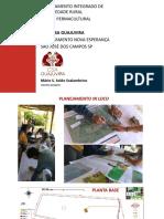 CLVS Design Geral Sítio CSA Guajuvira abr20