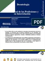 Diversidad de las Profesiones y su Interrelación