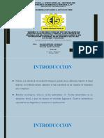 DIAPOSITIVAS_DAVID-EDGAR-RODRIGO[1]