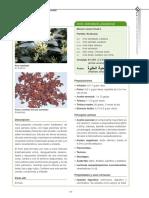 254918-Text de l'article-343907-1-10-20120621.pdf