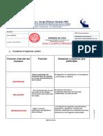 2-4 GUIA2020-3 ANDRES FELIPE MORALES 604 (1)