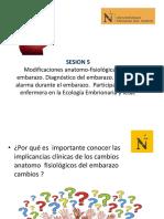 SEMANA 5-Modificaciones Anatomo Fisiologicas en el Embarazo.pdf