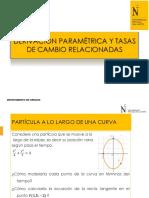PPT - derivación paramétrica