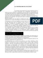 (BIOQUIMICA)_Libro_-_capitulo_9_metab._de_los_glucidos (1)