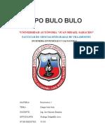 CAMPO BULO BULO PROYECTO.docx