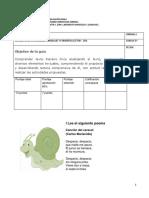 Guía de Lenguaje para 5° Básico