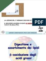 LEZIONE 9 ossidazione acidi grassi