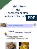 LEZIONE 12  metabolismo dei composti azotati