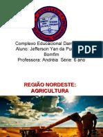 Agricultura do nordeste