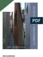 Blandiana, Ana - Coridoare de oglinzi