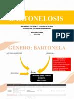 BARTONELOSIS .....pptx
