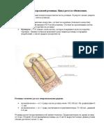 Строение натуральной ресницы.docx