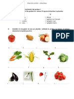 FISA DE LUCRU - GRADINA.docx
