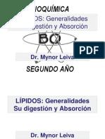 Digestion y Absorcion de los Lipidos.pdf