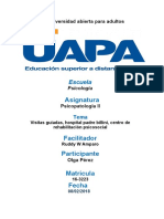 trabajo final psicopatologia ll.docx