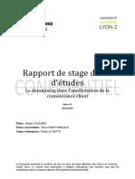 Rapport_de_stage_de_fin_detudes_Le_datam.pdf