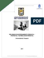 Presentación Diplo Entren Pre-Post y EPN