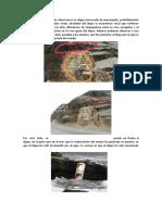 Informe morro solar (1).docx