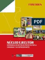 Nucleo Ejecutor Experiencia de Gestion (1)